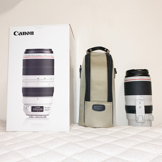 Canon - EF100-400mm F4.5-5.6L IS II USM
