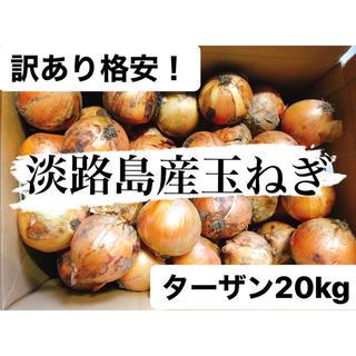 訳あり格安!南あわじ産玉ねぎターザン20kg送料無料(野菜)