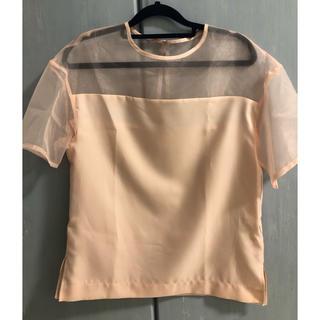 ルシェルブルー(LE CIEL BLEU)のシースルーTシャツ le ciel bleu(Tシャツ(半袖/袖なし))