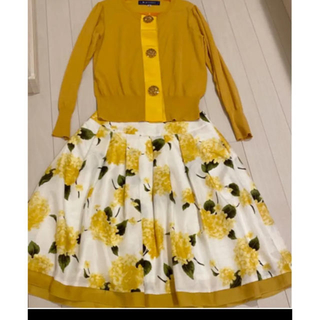 エムズグレイシー(M'S GRACY)のエムズグレイシー  上下 セット 花柄スカート(セット/コーデ)