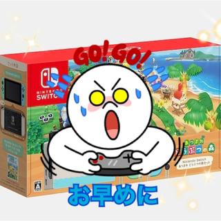 Nintendo Switch - 【限定・レア品】Nintendo Switch あつまれ どうぶつの森セット