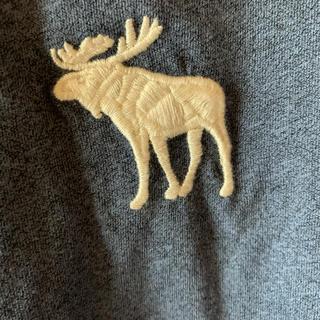 Abercrombie&Fitch - アバクロ tシャツ 【大人気ビックアイコン.美品.最終価格】