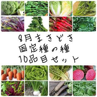★伝統野菜 根菜 葉物★8月まきどき固定種の種セット(野菜)