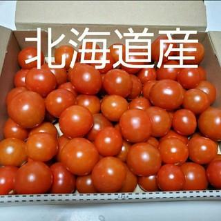 ミニトマト 1.5kg 激安詰め込パック(野菜)