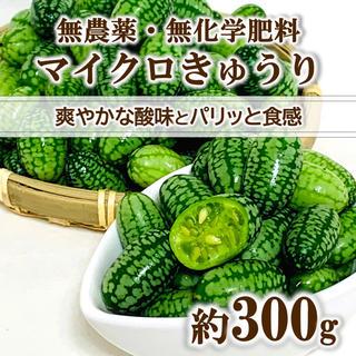 【無農薬・無化学肥料】マイクロきゅうり 約300g(100粒前後) 青森県産(野菜)