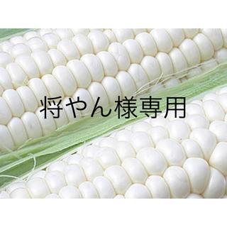 将やん様専用 雪の妖精20本(野菜)