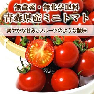 【フルーツのような酸味】無農薬・無化学肥料 高糖度ミニトマト 2品種 約1kg(野菜)