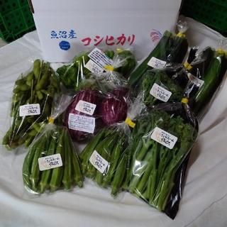 ☆mythica☆様専用!お野菜セット(野菜)