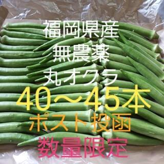 無農薬丸オクラ 福岡県産 ポスト投函(野菜)