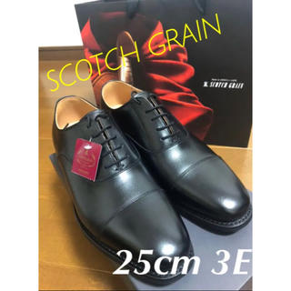 REGAL - スコッチグレイン 25㎝ 3E