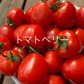 トマトベリー(野菜)