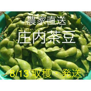 ⭐︎新鮮!!朝採り庄内茶豆 A品 1kg 8/13 no.27 枝豆 だだちゃ豆(野菜)