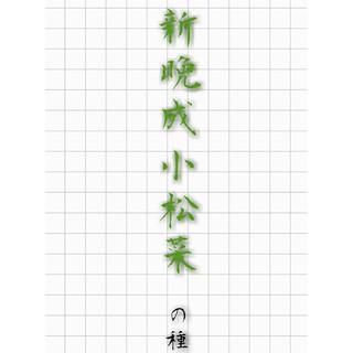 新晩成小松菜 の種 野菜の種 ハーブの種 有機種子 固定種 在来種(野菜)