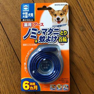 アースセイヤク(アース製薬)の犬用★アース★ノミ マダニとり&蚊よけ首輪★(犬)