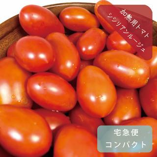 加熱調理用「シシリアンルージュ」約1kg 栽培期間中農薬不使用 ミニトマト(野菜)