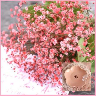 華やかで上品♡『ローズかすみ草』花の種50粒(その他)
