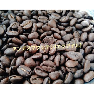 エクアドル🇪🇨アンデスマウンテン 100g 送料無料(コーヒー)