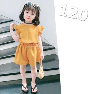 【120㎝】トップス+パンツ 2点セット セットアップ 女の子 韓国版