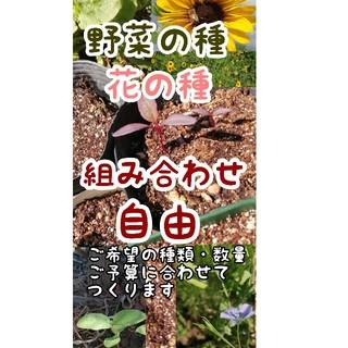 野菜の種・花の種 自然農・自家採取・令和収穫多数あり(野菜)