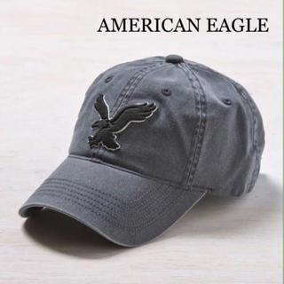 American Eagle - アメリカンイーグル 新品 レア インスタ大人気 イーグル柄 キャップ 色違い有り