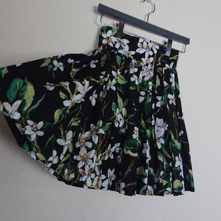 DOLCE&GABBANA - 美品     DOLCE&GABBANA  スカート