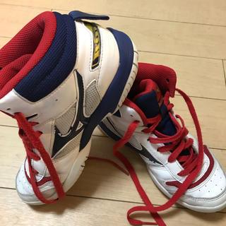 ミズノ(MIZUNO)のバスケットボール シューズ ミズノ 23cm(バスケットボール)