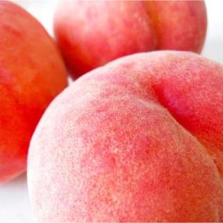 【クール便利用】山梨県産 ギフト用高級特大桃 5kg (フルーツ)