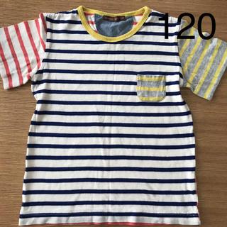 スタジオミニ(STUDIO MINI)の女の子 男の子 トップス Tシャツ 120センチ (Tシャツ/カットソー)