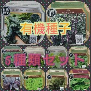 有機種子 5種セット 野菜の種 ハーブの種 固定種(野菜)
