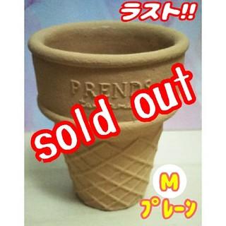 【完売】アイスコーン鉢♪ プレーン:Mサイズ⑥ 多肉植物 寄せ植え (プランター)
