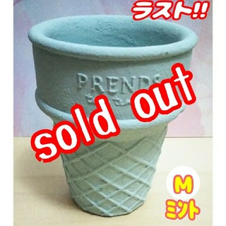 【完売!!】アイスコーン鉢♪ ミント:Mサイズ⑥ 多肉植物 寄せ植え (プランター)