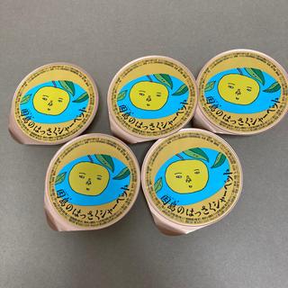 【広島土産】 因島のはっさくシャーベット 5個セット