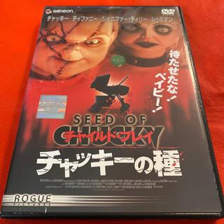 チャイルド・プレイ チャッキーの種 DVD(外国映画)