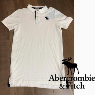 アバクロンビーアンドフィッチ(Abercrombie&Fitch)のアバクロ ポロシャツ   美品 価格交渉ok(ポロシャツ)