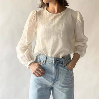 BEAUTY&YOUTH UNITED ARROWS - EMMEL REFINES シアーシャツ