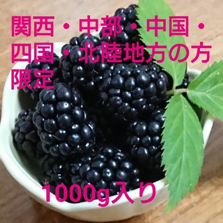 地域別 送料込み  冷凍 ブラックベリー  1000g  ①(フルーツ)