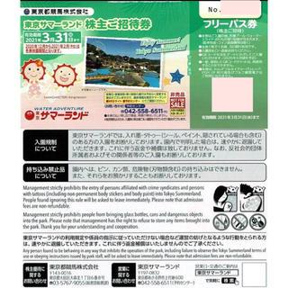 2枚 東京サマーランド  株主優待券 8月利用可能 フリーパス 東京都競馬(プール)