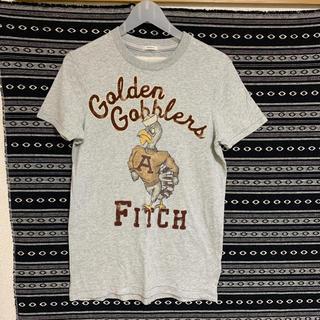 アバクロンビーアンドフィッチ(Abercrombie&Fitch)のAbercrombie&Fitch Tシャツ(Tシャツ/カットソー(半袖/袖なし))