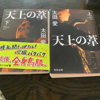 カドカワショテン(角川書店)の天上の葦 上下巻(文学/小説)