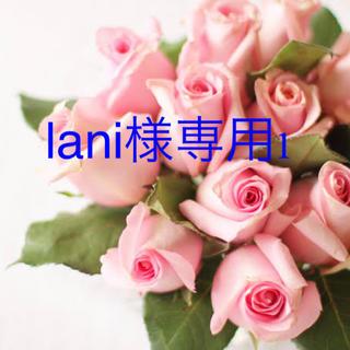 lani様専用1(その他)
