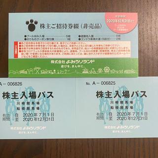 よみうりランドの株主ご招待券綴1冊(遊園地/テーマパーク)