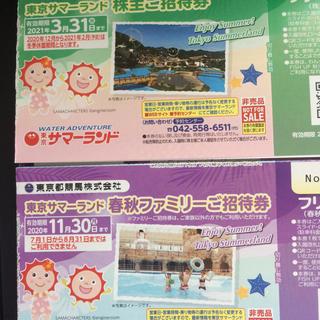 東京都競馬 株主優待券 東京サマーランド 1冊(遊園地/テーマパーク)