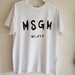 エムエスジイエム(MSGM)のmsgm シャツ(Tシャツ/カットソー(半袖/袖なし))