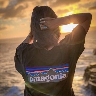 patagonia - 【Mサイズ】パタゴニアpatagoniaTシャツ半袖胸ポケットつき