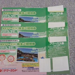 3枚 即発送 速達対応可能  東京サマーランド フリーパスチケット(遊園地/テーマパーク)