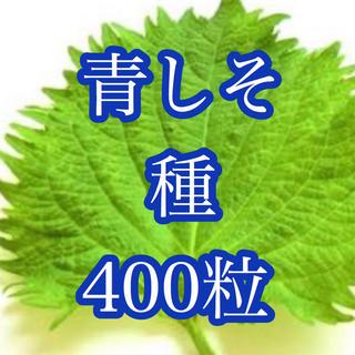 青じそ種たっぷり400粒(その他)