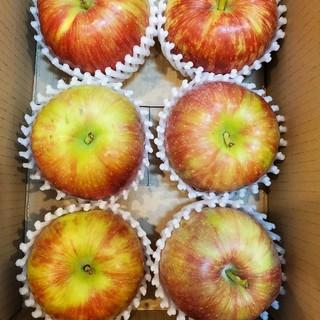 新りんご!! 信州安曇野産「シナノレッド」(フルーツ)