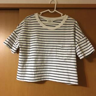 green label relaxing - グリーンレーベルリラクシング★コットンTシャツ フリーサイズ