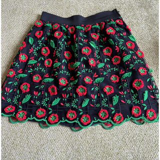 アナスイ(ANNA SUI)のANNA SUI  スカート(ミニスカート)