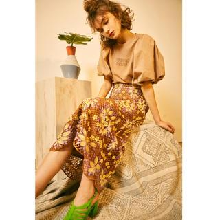 リリーブラウン(Lily Brown)のタグ付き・試着のみ リリーブラウン お花レースロングスカート (ロングスカート)